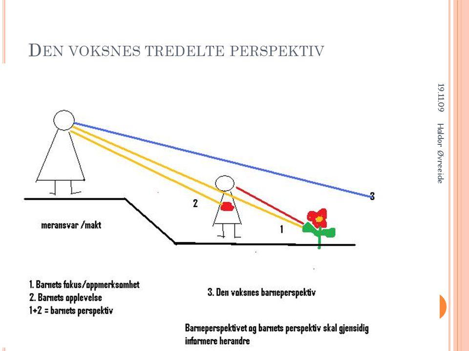Den voksnes tredelte perspektiv