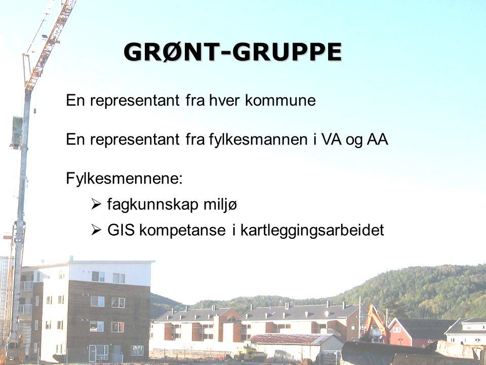 GRØNT-GRUPPE En representant fra hver kommune