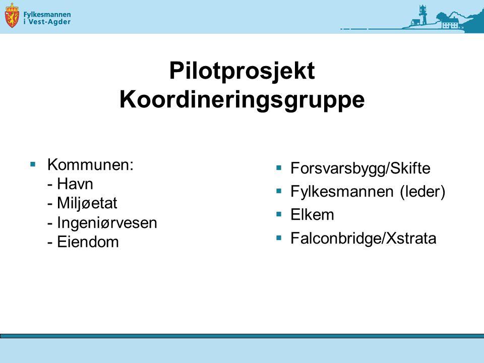 Pilotprosjekt Koordineringsgruppe