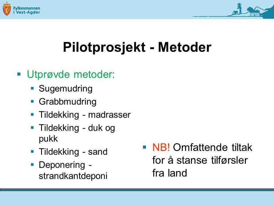 Pilotprosjekt - Metoder