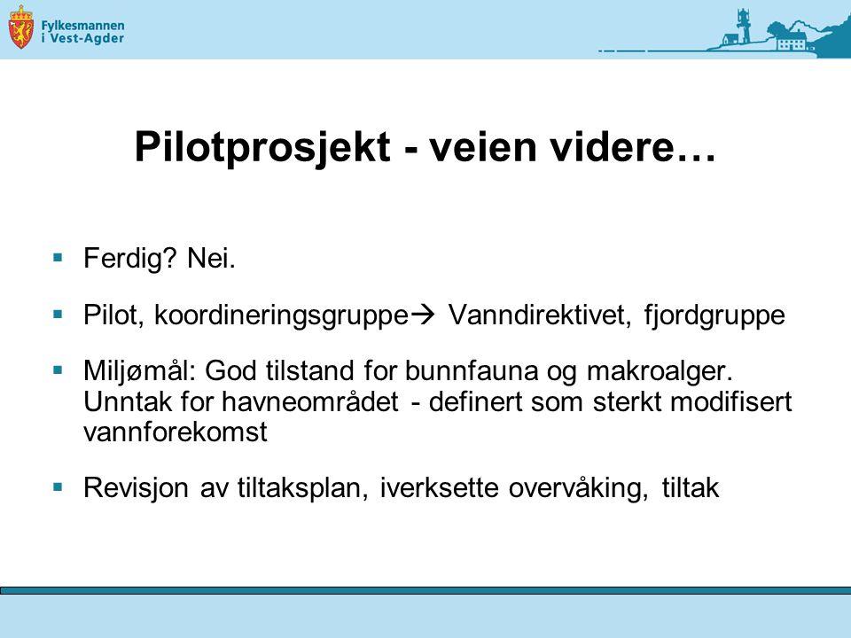 Pilotprosjekt - veien videre…