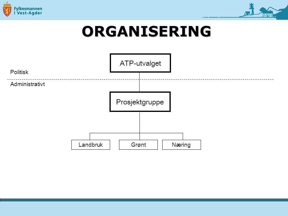 ORGANISERING ATP-utvalget Prosjektgruppe Politisk Administrativt