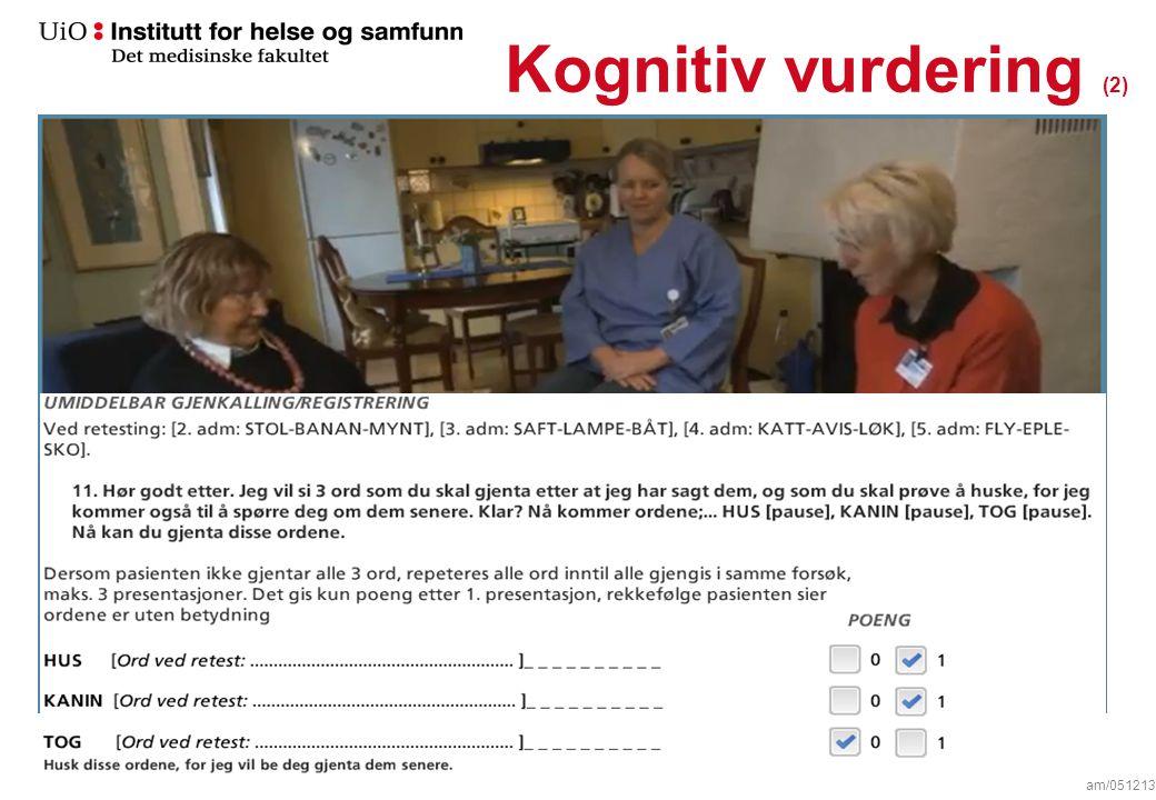 Kognitiv vurdering (1) am/051213