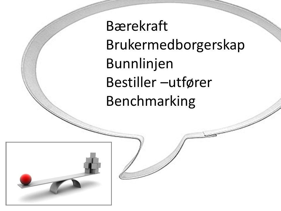 Bærekraft Brukermedborgerskap Bunnlinjen Bestiller –utfører Benchmarking