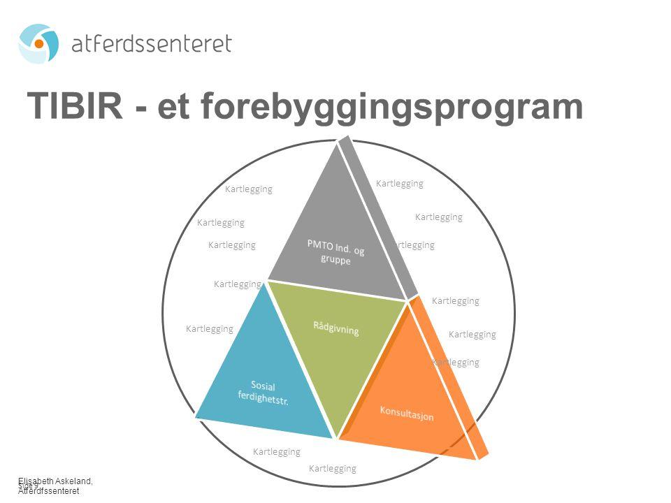 TIBIR - et forebyggingsprogram