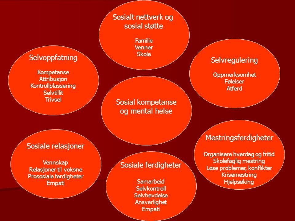 Mestringsferdigheter Sosiale relasjoner