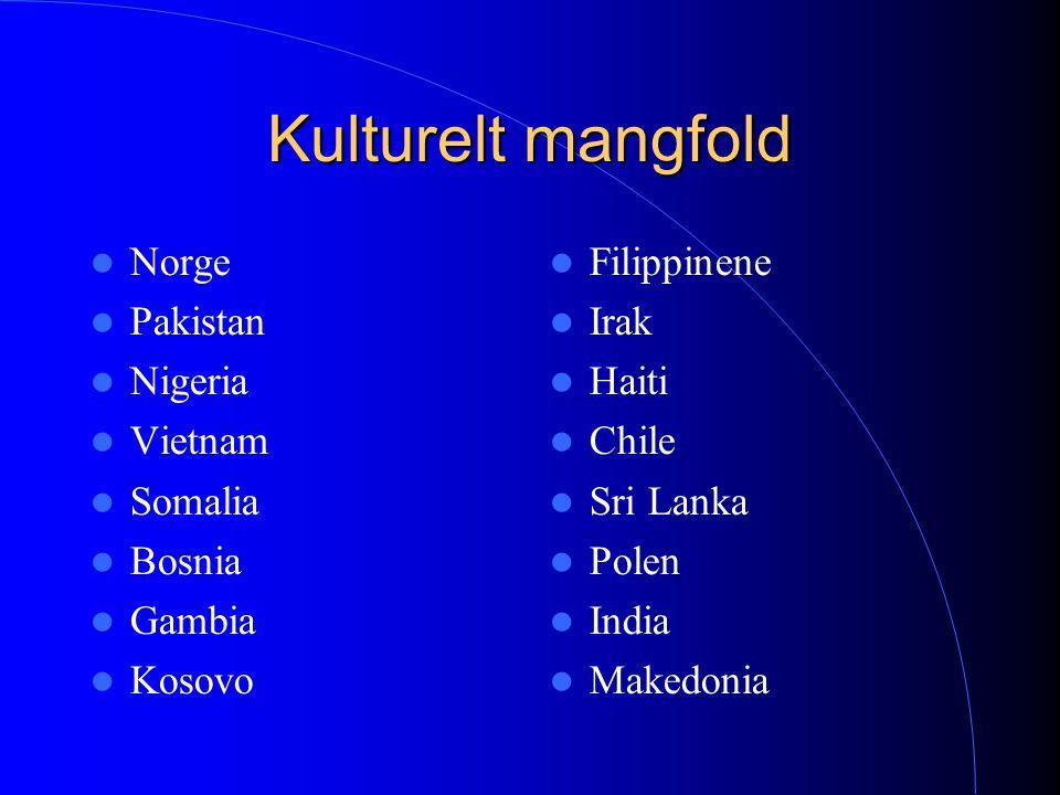 Kulturelt mangfold Norge Pakistan Nigeria Vietnam Somalia Bosnia