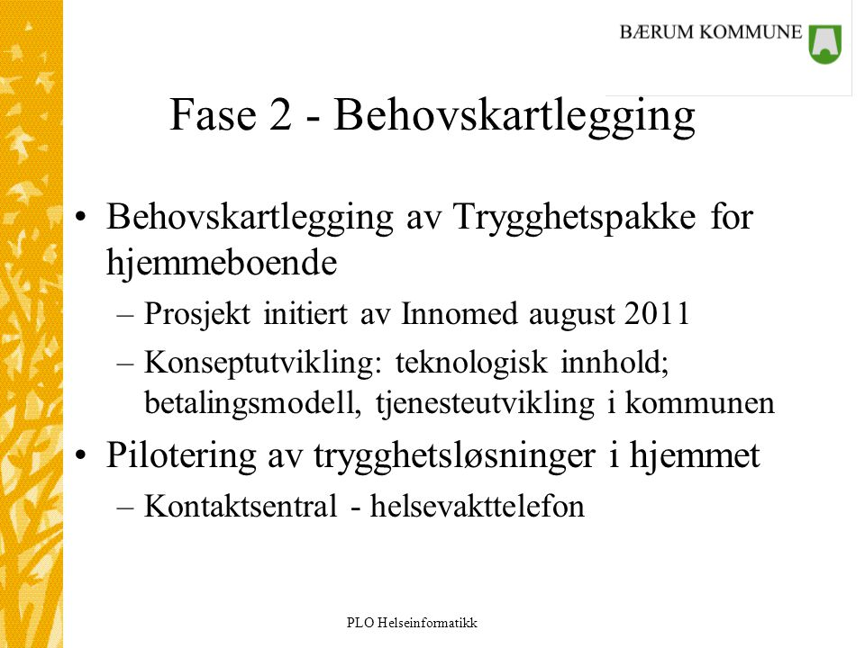 Fase 2 - Behovskartlegging