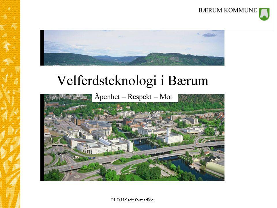 Jeg ønsker å starte med visjonen til Bærum.