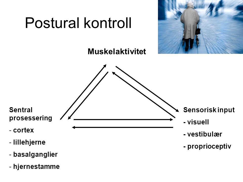 Postural kontroll Muskelaktivitet Sentral prosessering cortex