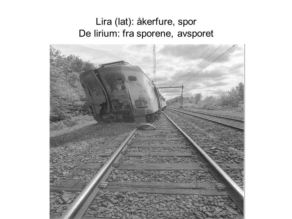 Lira (lat): åkerfure, spor De lirium: fra sporene, avsporet