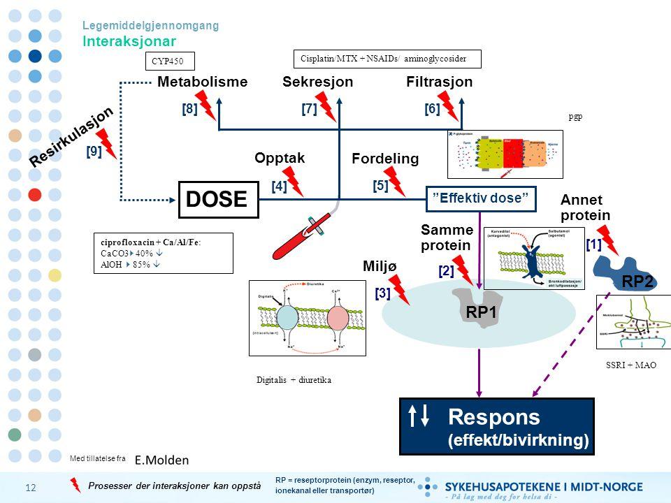 DOSE Respons RP2 RP1 (effekt/bivirkning) Metabolisme Sekresjon