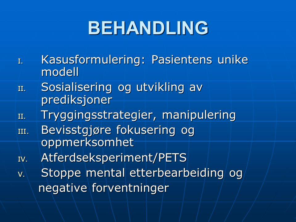 BEHANDLING Kasusformulering: Pasientens unike modell