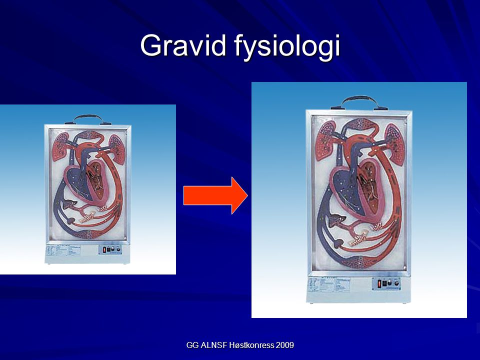 Gravid fysiologi GG ALNSF Høstkonress 2009
