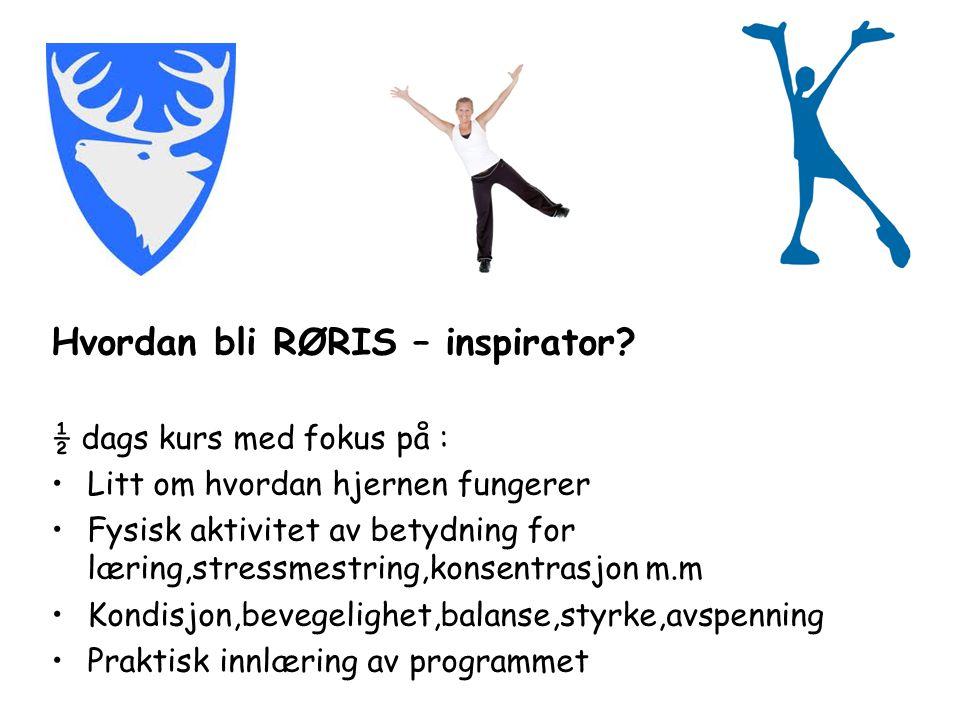 Hvordan bli RØRIS – inspirator