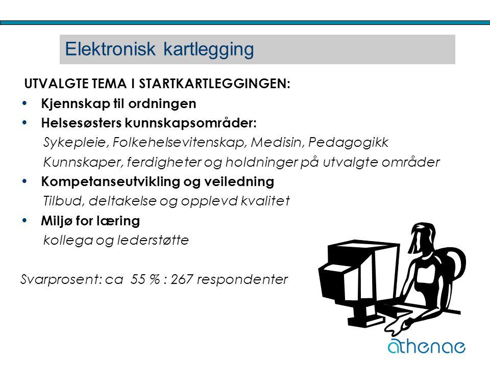 Elektronisk kartlegging
