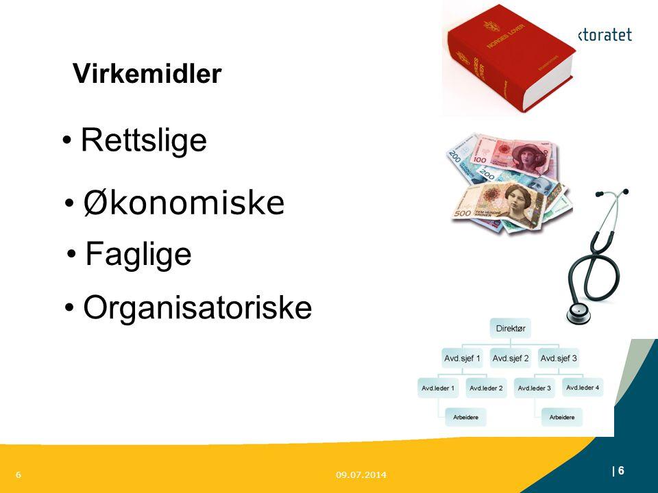 Rettslige Økonomiske Faglige Organisatoriske Virkemidler 6 6