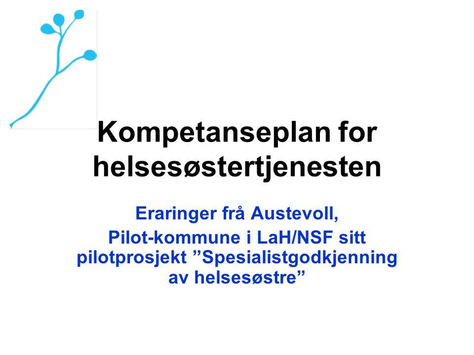 Kompetanseplan for helsesøstertjenesten