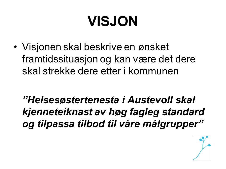 VISJON Visjonen skal beskrive en ønsket framtidssituasjon og kan være det dere skal strekke dere etter i kommunen.