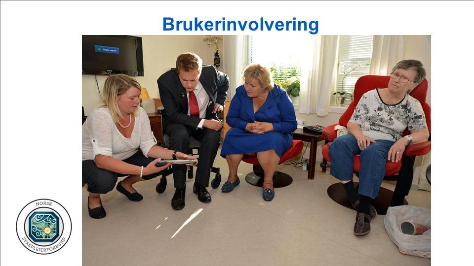 Brukerinvolvering