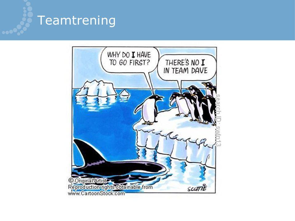 Teamtrening