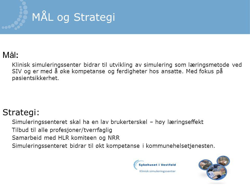 MÅL og Strategi Mål: Strategi: Tilbud til alle profesjoner/tverrfaglig