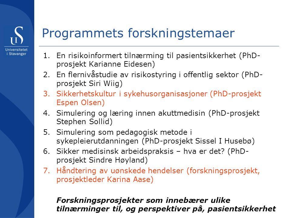 Programmets forskningstemaer