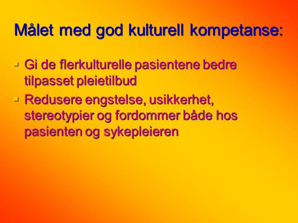 Målet med god kulturell kompetanse: