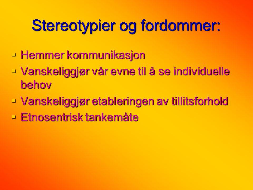 Stereotypier og fordommer: