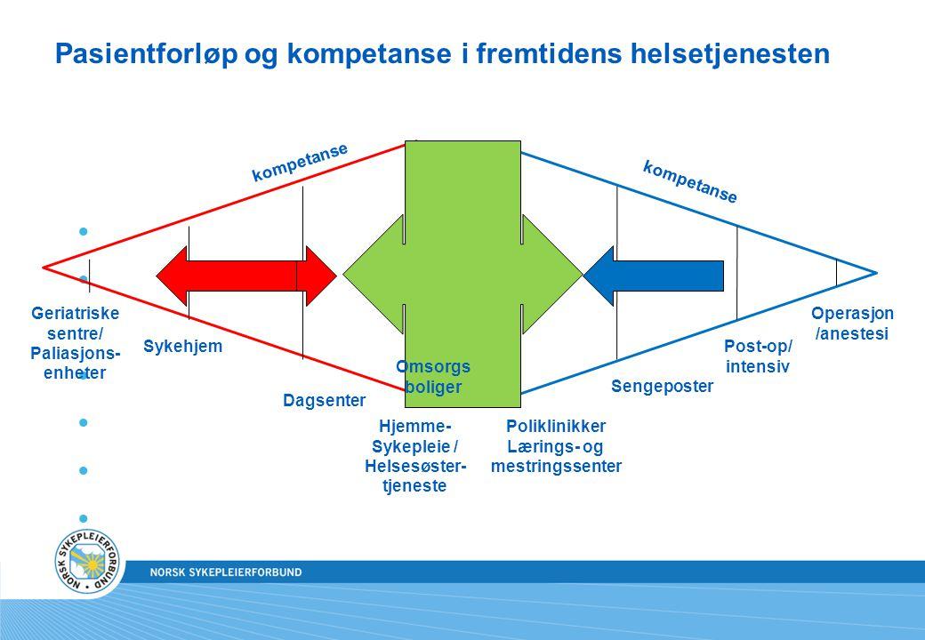 Pasientforløp og kompetanse i fremtidens helsetjenesten