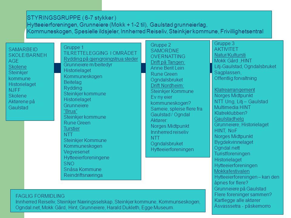 STYRINGSGRUPPE ( 6-7 stykker )