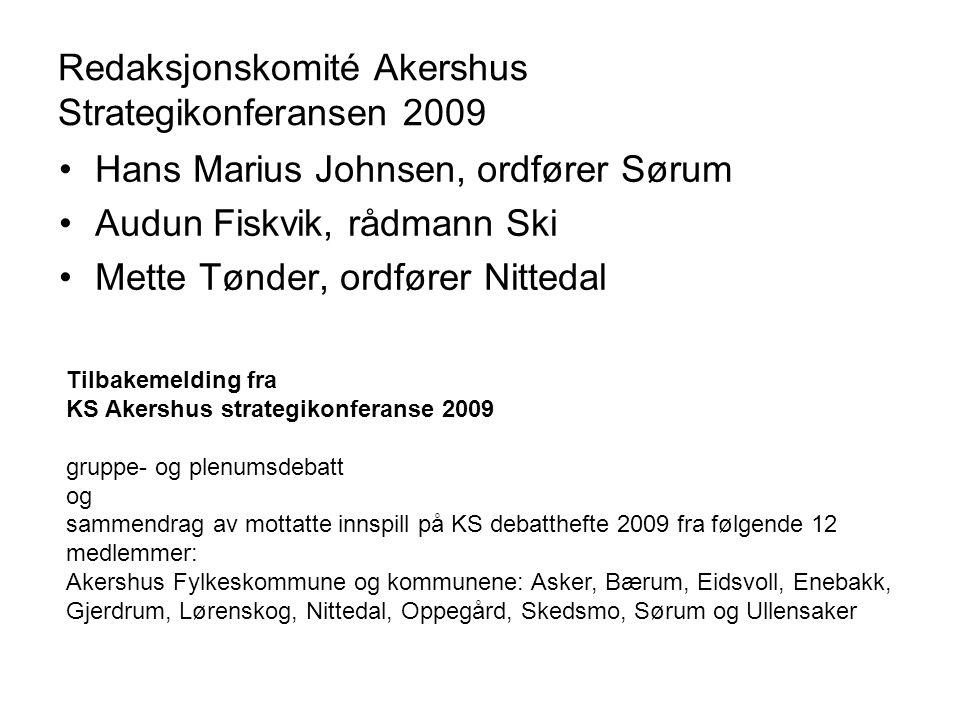 Redaksjonskomité Akershus Strategikonferansen 2009