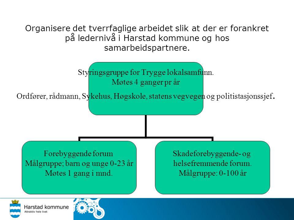 Organisere det tverrfaglige arbeidet slik at der er forankret på ledernivå i Harstad kommune og hos samarbeidspartnere.