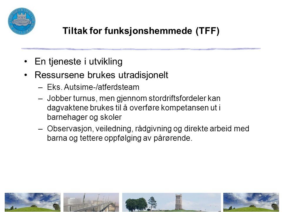 Tiltak for funksjonshemmede (TFF)