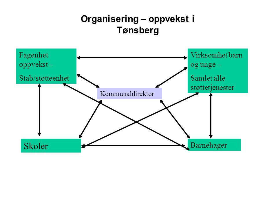 Organisering – oppvekst i Tønsberg