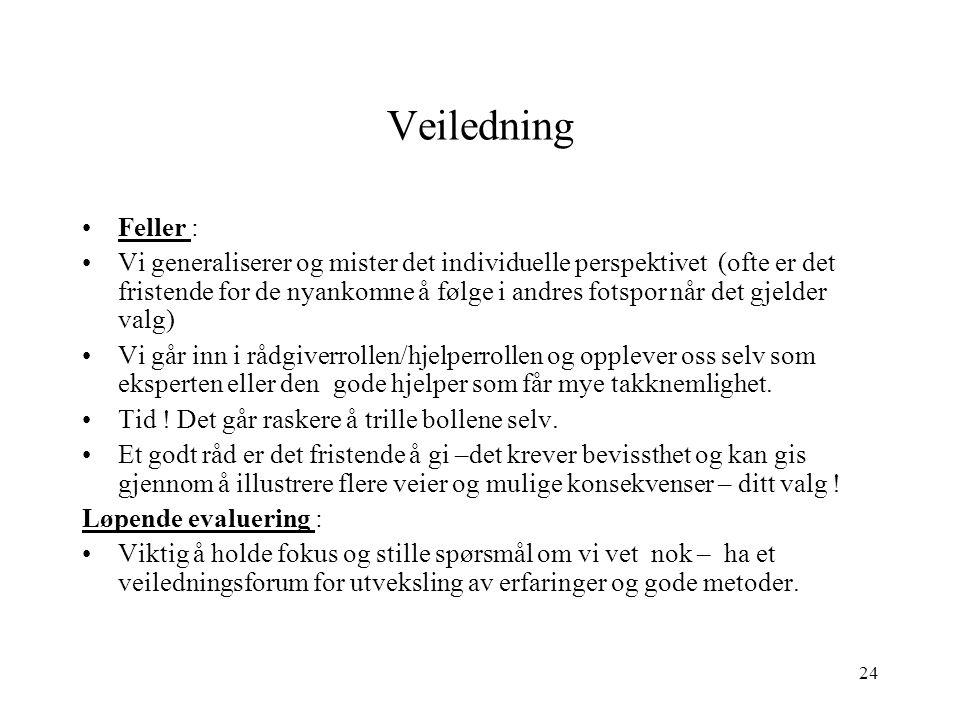 Veiledning Feller :