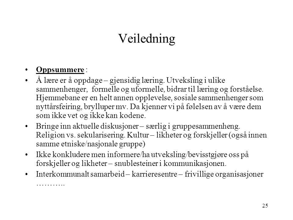 Veiledning Oppsummere :