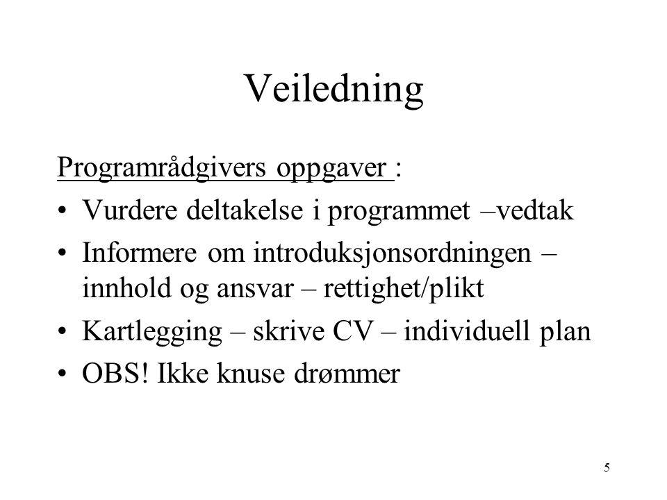 Veiledning Programrådgivers oppgaver :