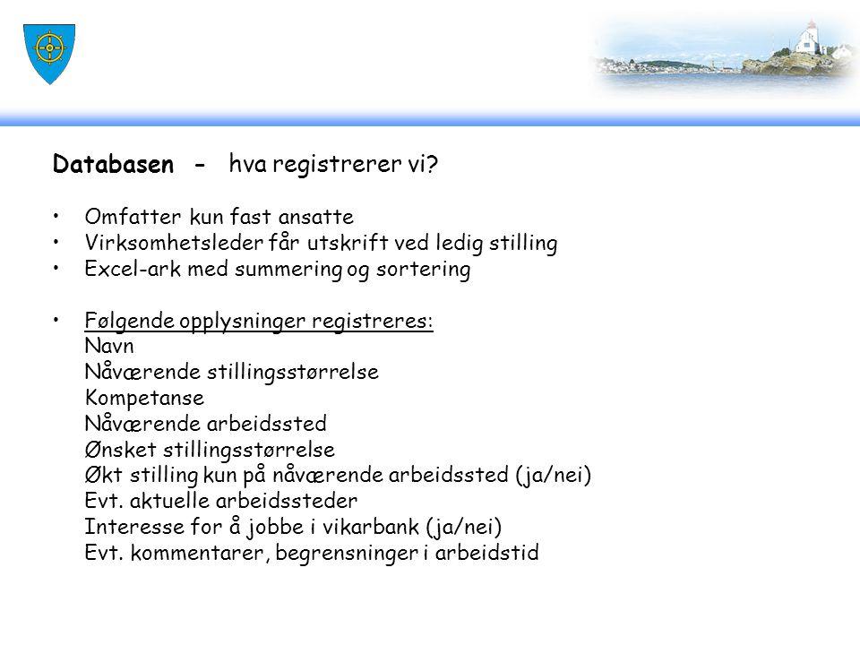Databasen - hva registrerer vi