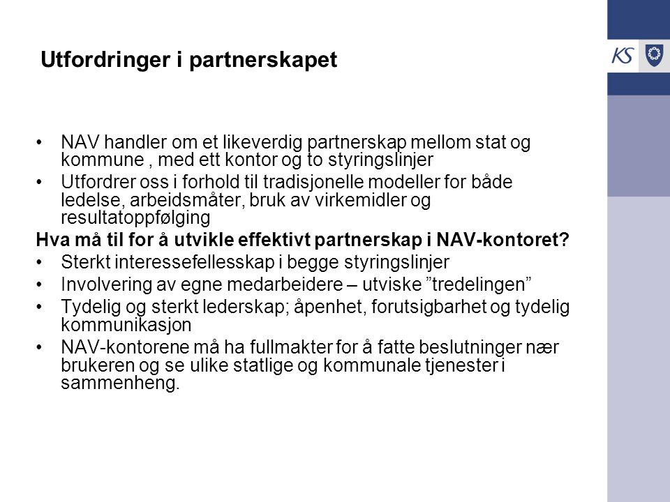 Utfordringer i partnerskapet