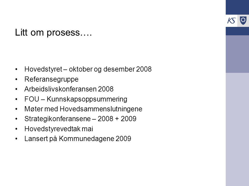 Litt om prosess…. Hovedstyret – oktober og desember 2008