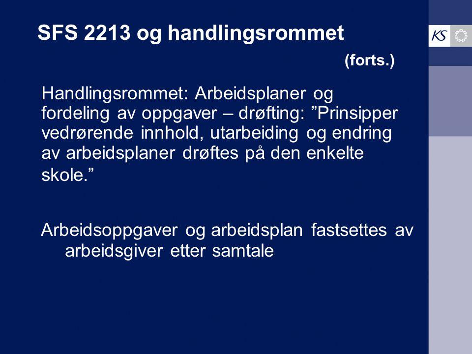 SFS 2213 og handlingsrommet (forts.)