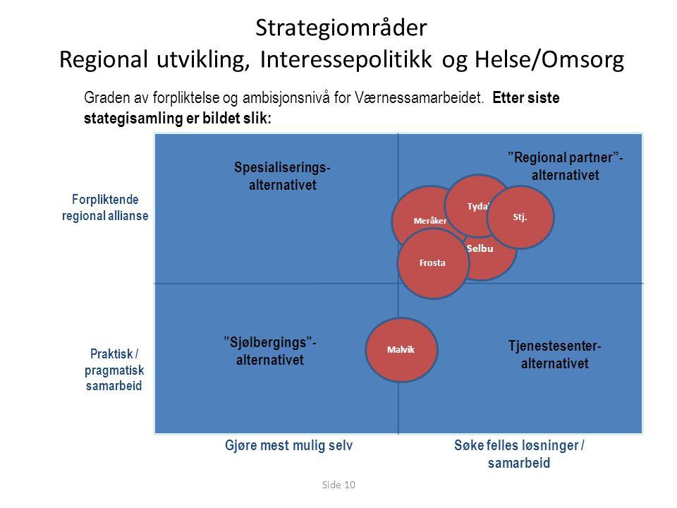 Strategiområder Regional utvikling, Interessepolitikk og Helse/Omsorg