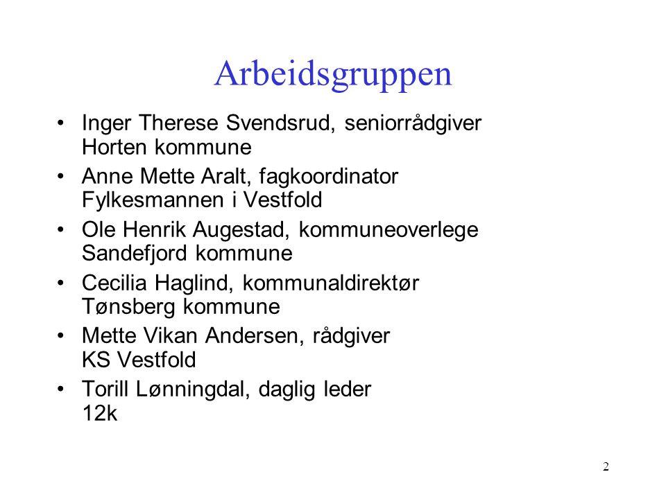 Arbeidsgruppen Inger Therese Svendsrud, seniorrådgiver Horten kommune