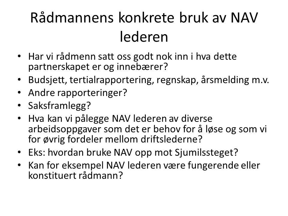 Rådmannens konkrete bruk av NAV lederen