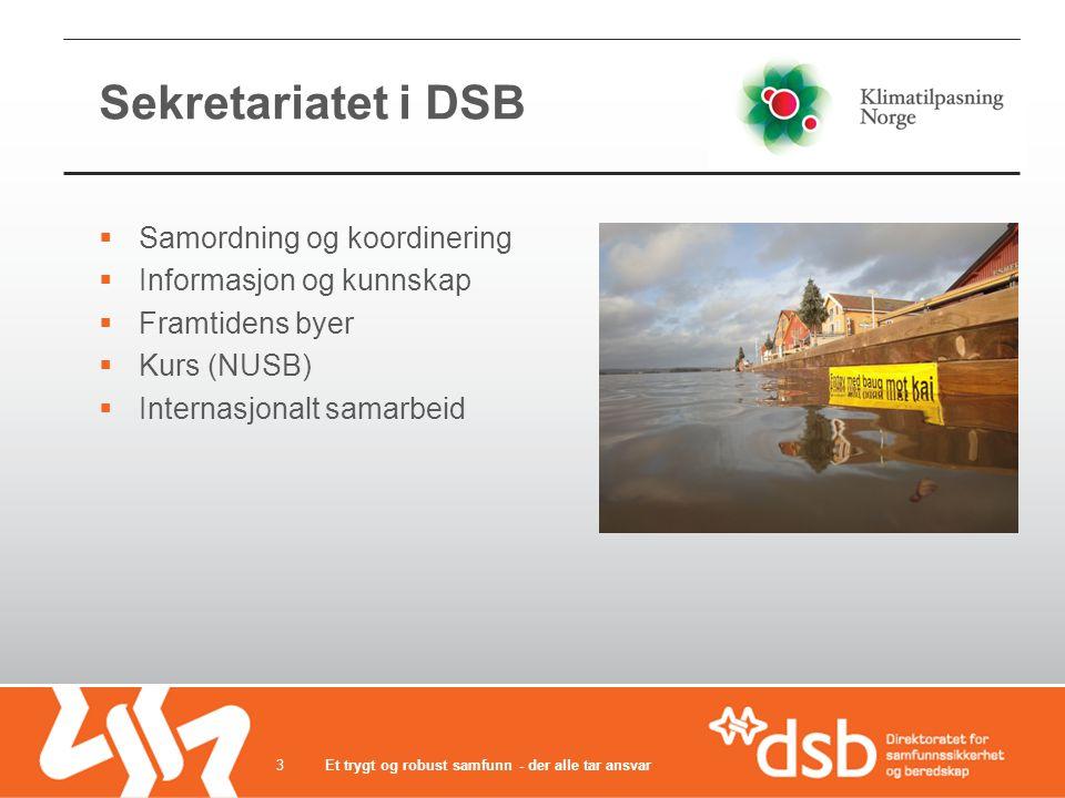 Sekretariatet i DSB Samordning og koordinering Informasjon og kunnskap
