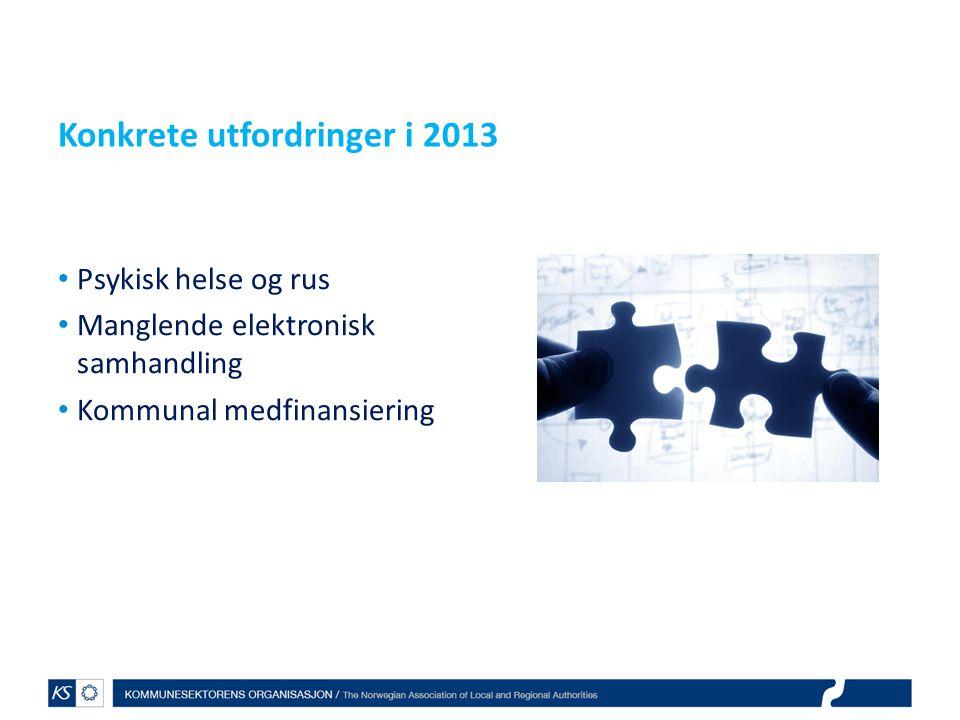 Konkrete utfordringer i 2013