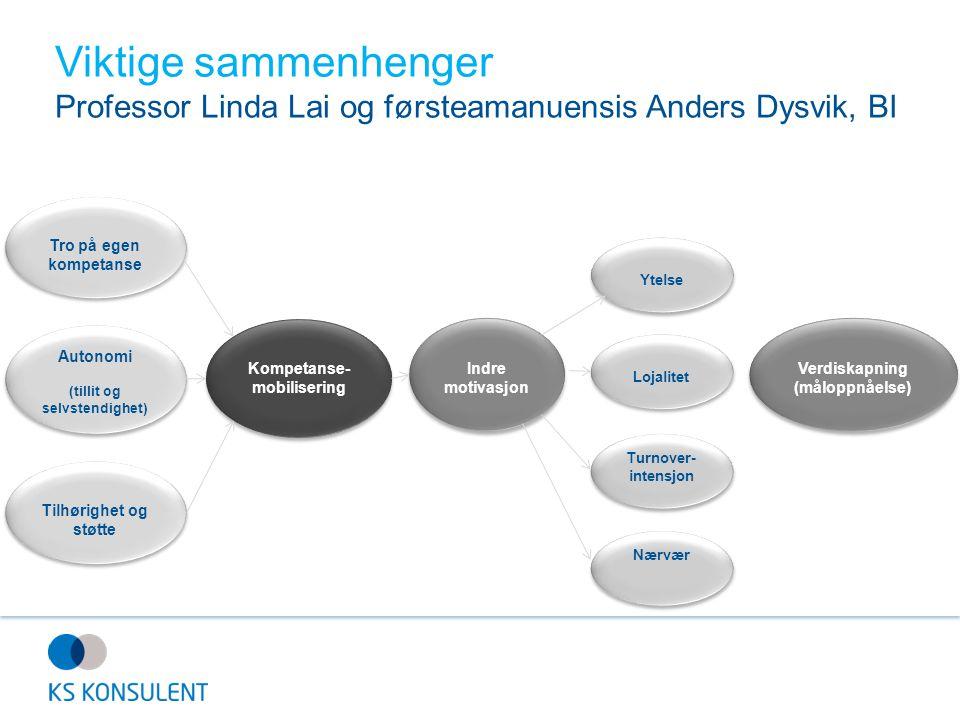 Viktige sammenhenger Professor Linda Lai og førsteamanuensis Anders Dysvik, BI