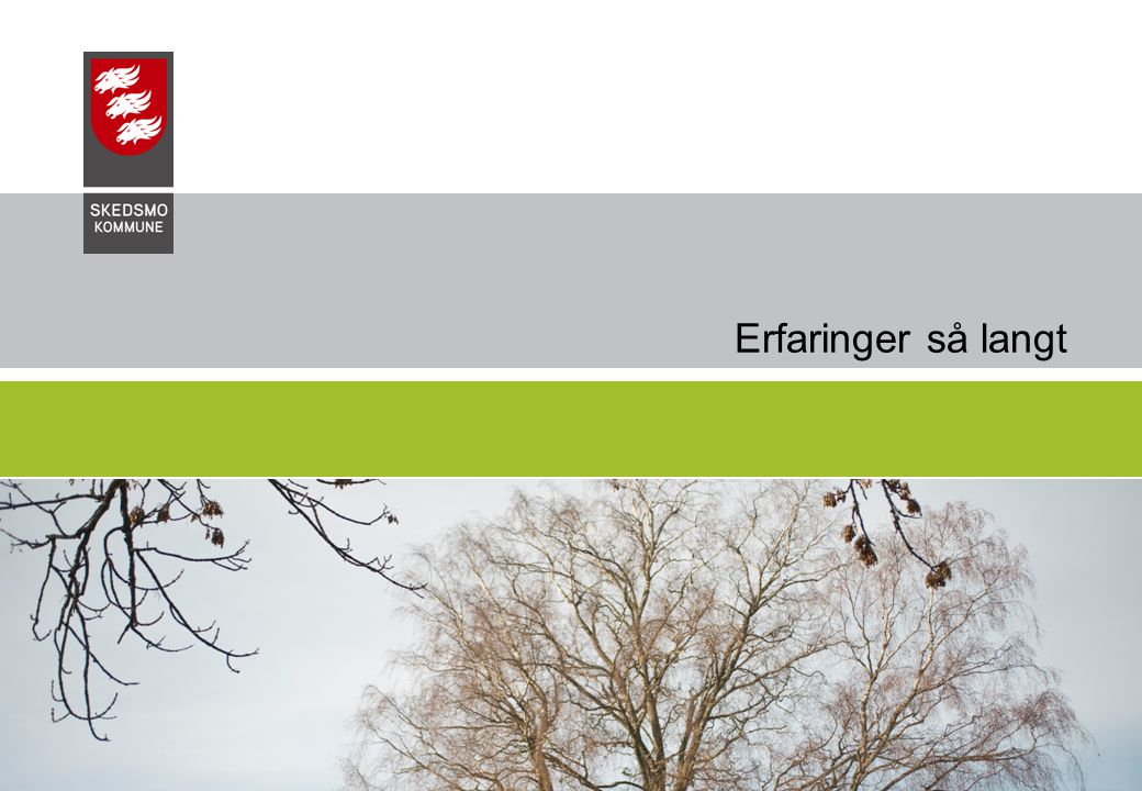 Erfaringer så langt 04.04.2017 Skedsmo Kommune, Undervisningssektoren