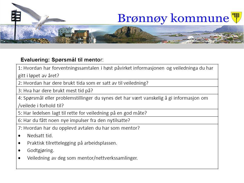 Evaluering: Spørsmål til mentor: